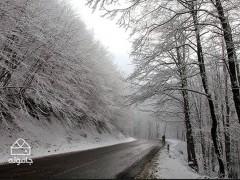 استان گیلان؛ سرما گردی در شمال