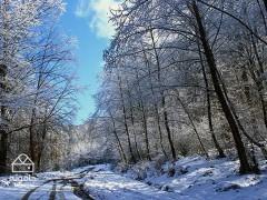مازندران؛ گشت و گذار زمستانه در استان دریایی