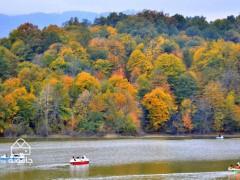 چم و خم چمستان، راهنمای سفر به جنگل های کشپل و دریاچه الیمالات