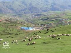 مسیر کوهستانی دوچرخه سواری در محدوده روستای داماش + نقشه و عکس