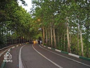 پارک جنگلی لویزان؛ بام سبز تهران